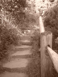 Path to Obscurity